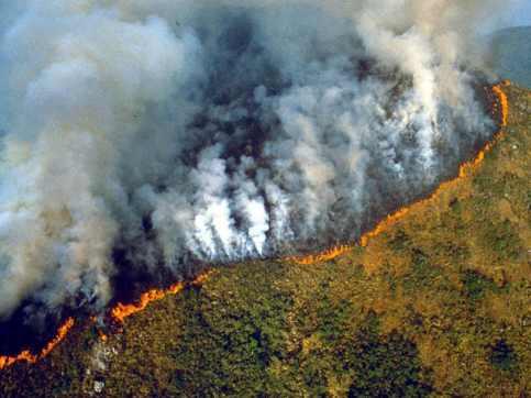 Amazon and Australia Fire